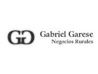 Sucursal Online de  Gabriel Garese Servicios Agropecuarios