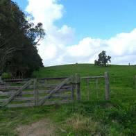 Campo de 109 hectareas en Zona Melilla - Uruguay