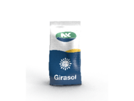 Girasol SYN 3970 CL