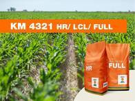 Maíz KWS KM 4321 HR / LCL / FULL